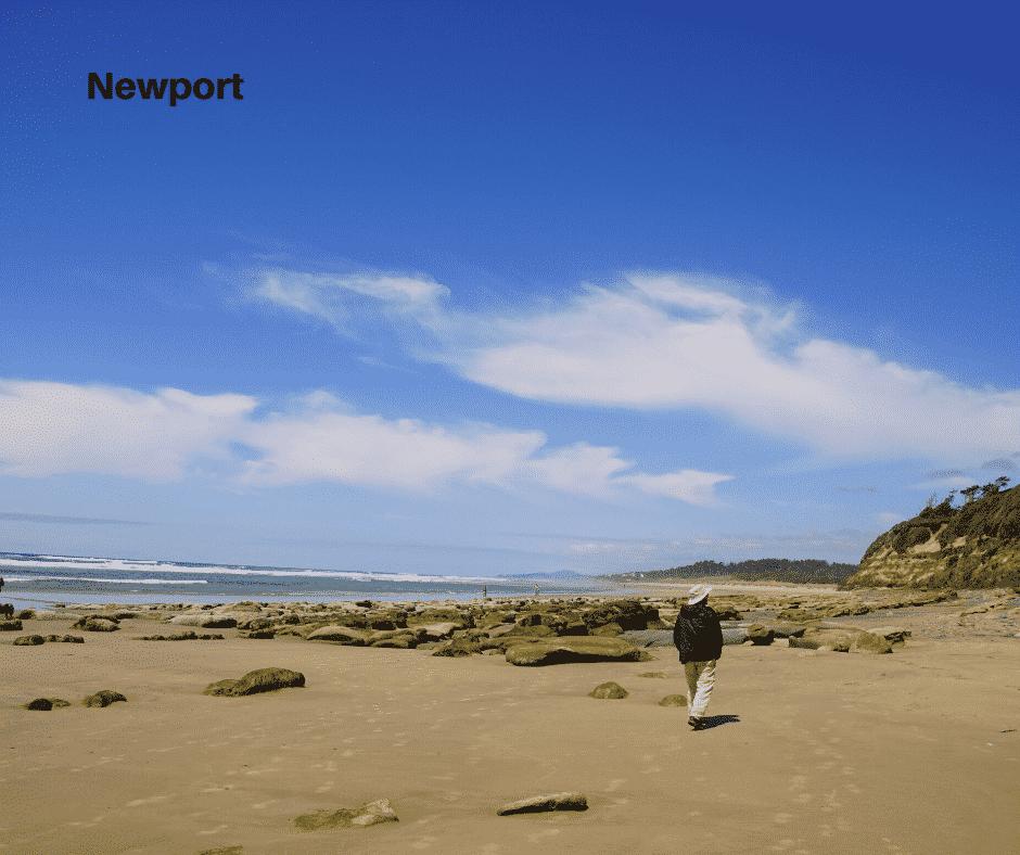 Newport image