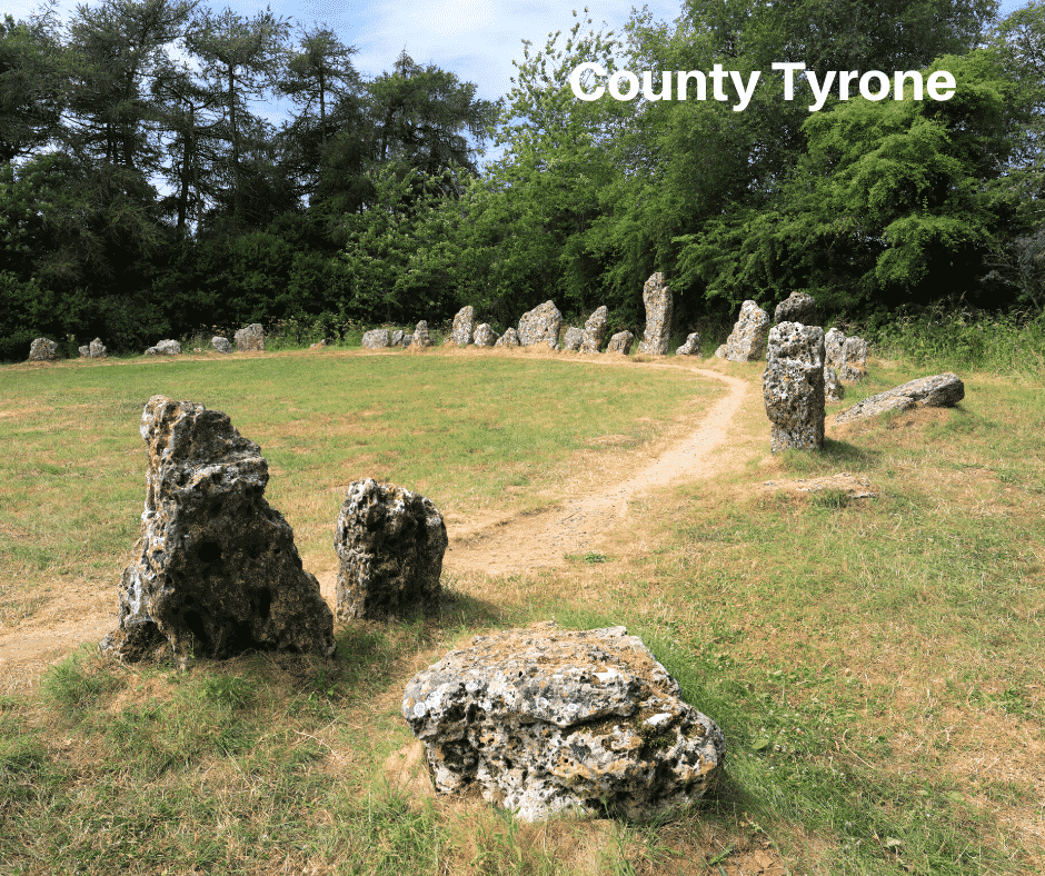 County Tyrone image