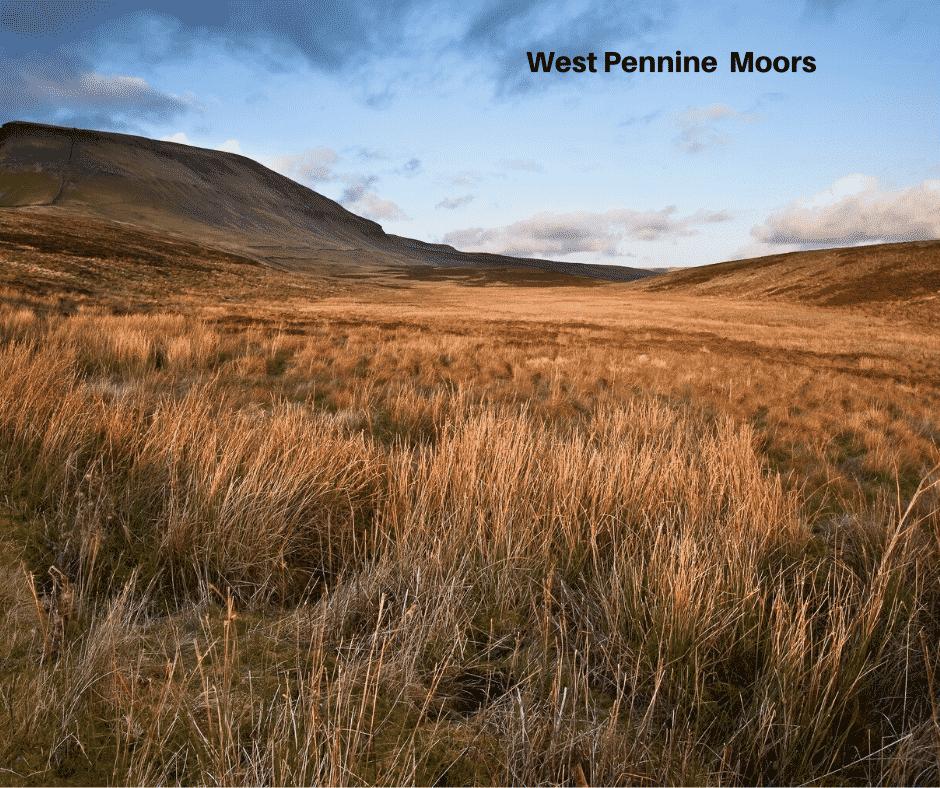 West Pennine Moors image