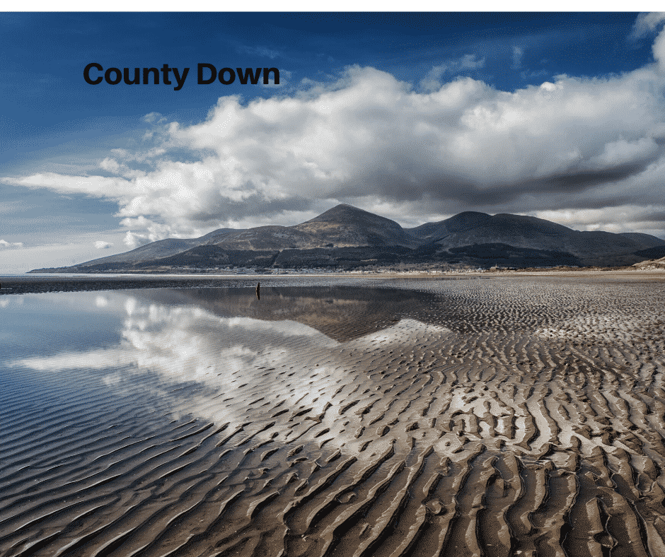 County Down image